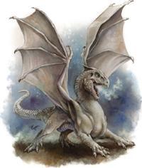 White_dragon_Wyrmling.jpg
